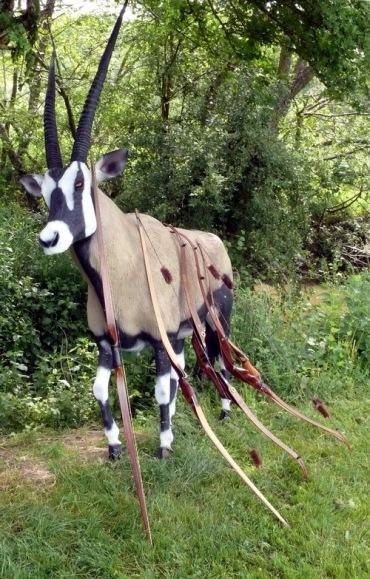 3D-Bourgogne-Archerie-21-mai-2009